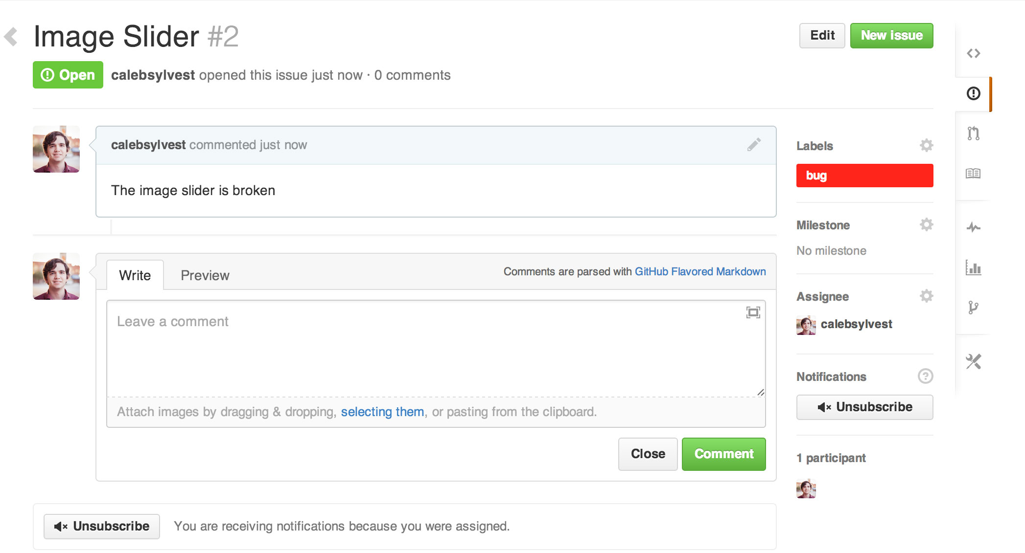 An example of a poorly formated issue in Github